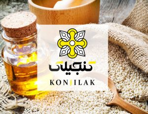 طراحی لوگو شرکت کنجیلاک