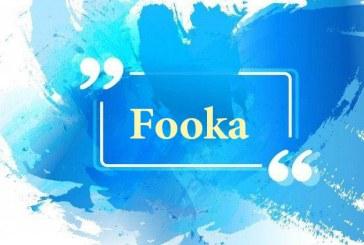 طراحی لوگو قارچ فوکا